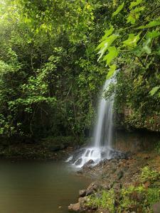 Kalihiwai Stream and Waterfall, Hawaii, USA by Douglas Peebles