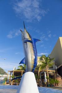Marlin Statue, Marina, Cabo San Lucas, Baja, Mexico by Douglas Peebles