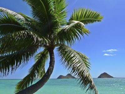 Mokulua Island, Lanikai, Kailua, Oahu, Hawaii, USA