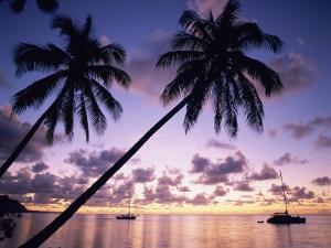 Opunohu Bay, Moorea, French Polynesia by Douglas Peebles