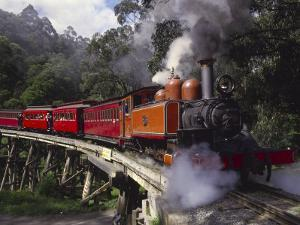 Puffing Billy Train, Mt. Dandenong, Australia by Douglas Peebles
