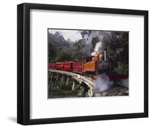 Puffing Billy Train, Mt. Dandenong, Australia by Douglas Peebles