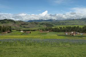 Sacred Valley, Cusco Region, Urubamba Province, Machupicchu, Peru by Douglas Peebles