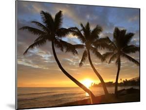 Sunrise, Windward Oahu, Hawaii by Douglas Peebles