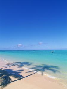 Tropical Beach with palm Tree shadows by Douglas Peebles