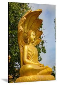 Udong Pagoda, Vipassana Dhura Mandala, Koh Chen, Cambodia by Douglas Peebles