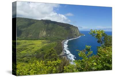 Waipio Valley, Hamakua Coast, Big Island, Hawaii, USA