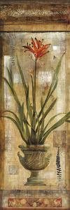 Rojo Botanical I by Douglas