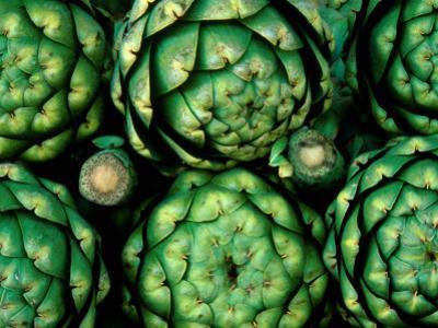 Fresh Artichokes by Douglas Steakley