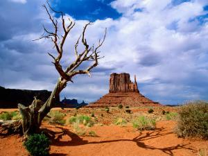 Monument Valley by Douglas Steakley