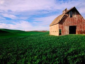 Red Barn in Field by Douglas Steakley