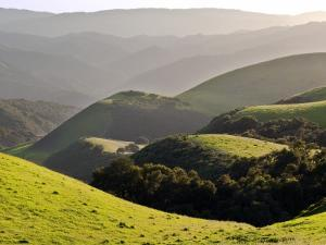 Spring Hills in Carmel Valley by Douglas Steakley