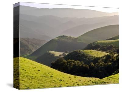 Spring Hills in Carmel Valley