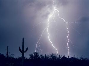 Electric Desert I by Douglas Taylor