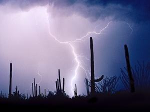 Electric Desert II by Douglas Taylor