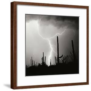 Electric Desert IV BW by Douglas Taylor