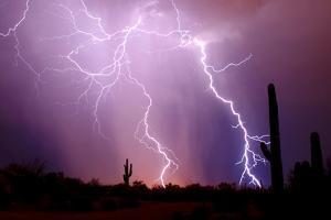 Electrifying by Douglas Taylor