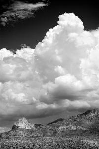 Gathering Summer Storm BW by Douglas Taylor