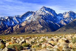 Mt Williamson II by Douglas Taylor