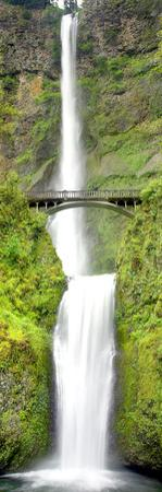 Multnomah Falls by Douglas Taylor