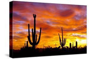 October Sunset by Douglas Taylor