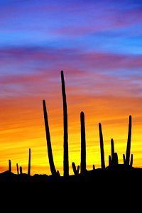 Solstice Sunset by Douglas Taylor