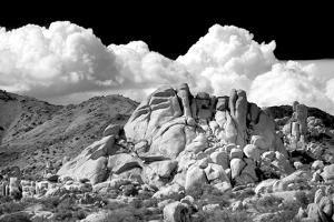Texas Canyon Rocks BW by Douglas Taylor