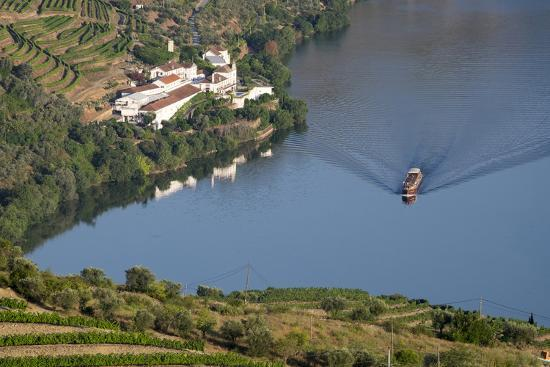 Douro Valley, Douro River, Porto. Valley Is Lined with Steeply Sloping Hills and Vineyards-Emily Wilson-Photographic Print
