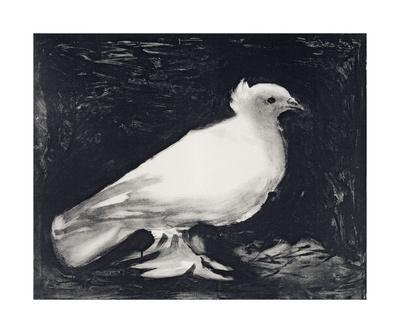 https://imgc.artprintimages.com/img/print/dove-1949_u-l-f5rmpw0.jpg?p=0