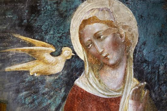 Dove of Holy Spirit and the Virgin--Giclee Print