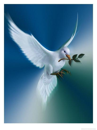 dove-of-peace_u-l-oqu4x0.jpg?h=550&p=0&w=550&background=fbfbfb