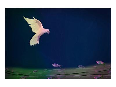Dove wishing-Claire Westwood-Art Print