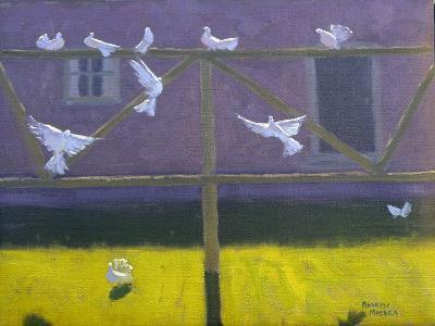 Doves, 1999-Andrew Macara-Giclee Print