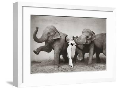 Dovima with Elephants, c.1955-Richard Avedon-Framed Art Print