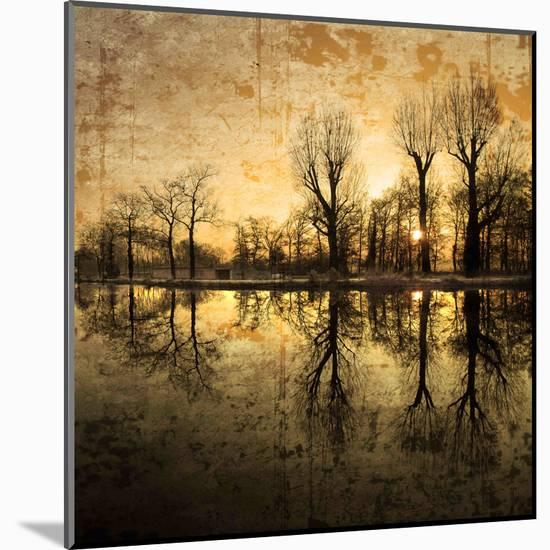 Down Deep into the Pain-Philippe Sainte-Laudy-Mounted Premium Photographic Print