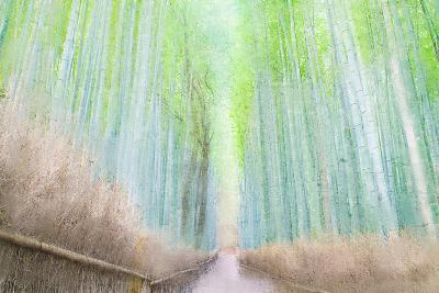 Down the Path-Kimberly Allen-Art Print