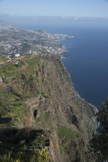 Down to Funchal from Platform at Cabo Girao Second Highest Cliff in World at 589 Metres Portugal-Natalie Tepper-Photo