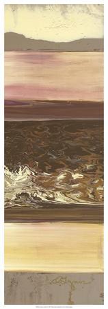 https://imgc.artprintimages.com/img/print/down-under-ii_u-l-f5q4k80.jpg?p=0