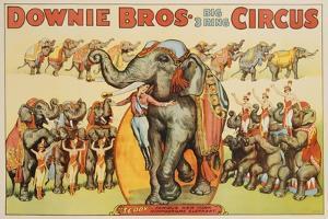Downie Bros. Big 3 Ring Circus Poster
