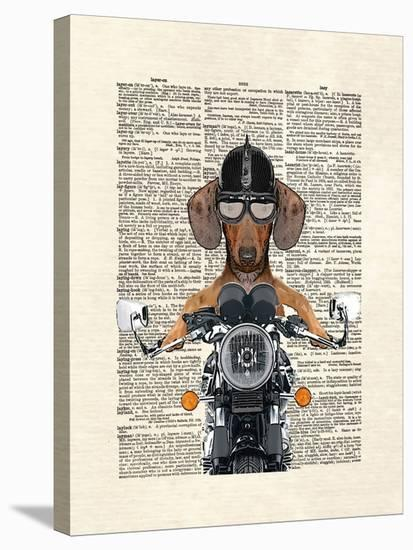 Doxie Motorcycle-Matt Dinniman-Stretched Canvas Print