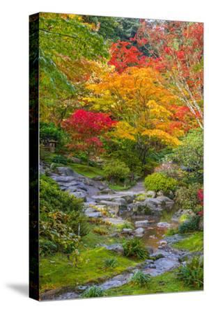 Fall Colors Rocky Stream