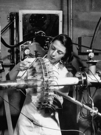 Dr. Liane Russell Studying Effects of Radiation on Mouse Genetics at Oak Ridge National Laboratory--Photographic Print