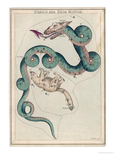 Draco and Ursa Minor Constellation-Sidney Hall-Giclee Print