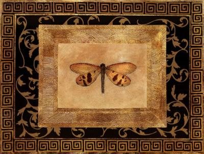 Dragon Fly II-Alan Hayes-Art Print