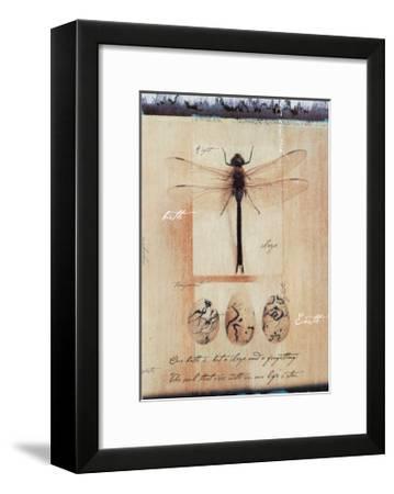 Dragon Fly-Julie Nightingale-Framed Art Print