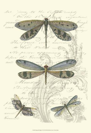 Dragonfly Delight I--Art Print