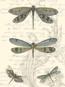 Dragonfly Delight I