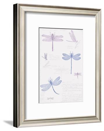 Dragonfly Sketchbook-Maria Mendez-Framed Art Print