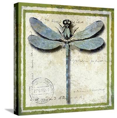 Dragonfly-Karen J^ Williams-Stretched Canvas Print