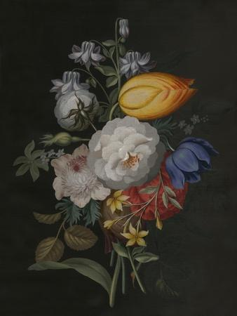 https://imgc.artprintimages.com/img/print/dramatic-bouquet-iii_u-l-q1bft0h0.jpg?p=0
